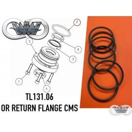 TL131.06 ORING FOR FLANGE CMS GREENJET