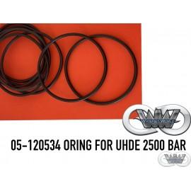 05-120534 ORING FOR UHDE 2500 BAR
